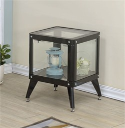 Furniture of America Congdon Modern 1-Shelf Small Metal Display Cabinet in Black - Enitial Lab IDF-AC6273BK-S