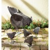 Zingz and Thingz Hen With Chicks Sculpture