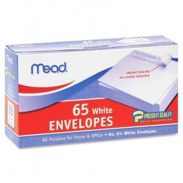 Mead Plain Business Size Envelopes (Set of 65)