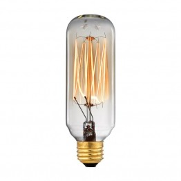 Elk Lighting Vintage Filament 40 Watt Candelabra Light Bulb in Clear