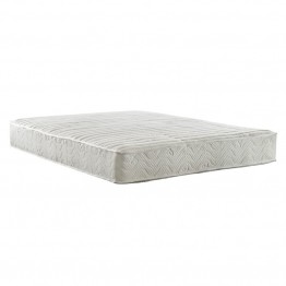 Signature Sleep Performance 8 Inch Certified Foam Coil Queen Mattress
