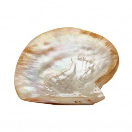 Dimond Home Pearl Shell Plate in Silver