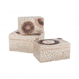 "Dimond Home 9"""" Urchin Box in Natural"