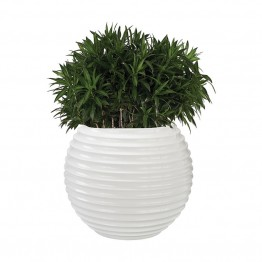 "Dimond Home Jaya 17"""" Bamboo Tuft Faux Plant in Gloss White"