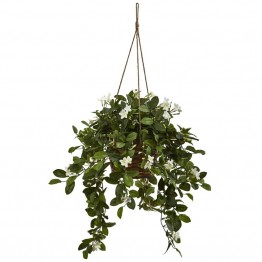 Nearly Natural Mixed Stephanotis Hanging Basket in Green