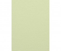 Light Green Colourline 43733 Wallpaper