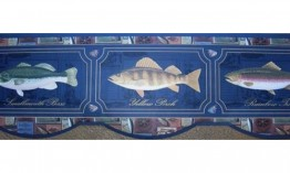 Blue Framed Fish Photos 593565 Wallpaper Border