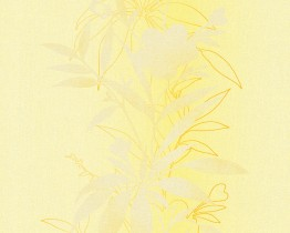 Yellow Felicia 937062 Wallpaper