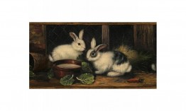 Brown Country Rabbits GG54061 Wallpaper Border