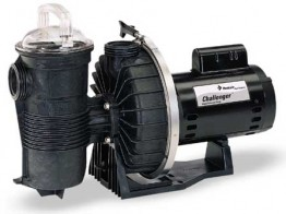Pentair Challenger Swimming Pool Pump